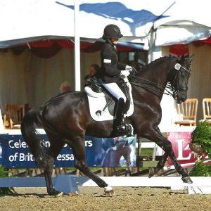 Nicola Naylor | Equestrian Brand Ambassador