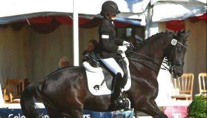 Equestrian PR | Nicola Naylor